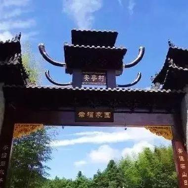 """景宁这四个村上榜市级""""绿化示范村""""!快来看看自..."""
