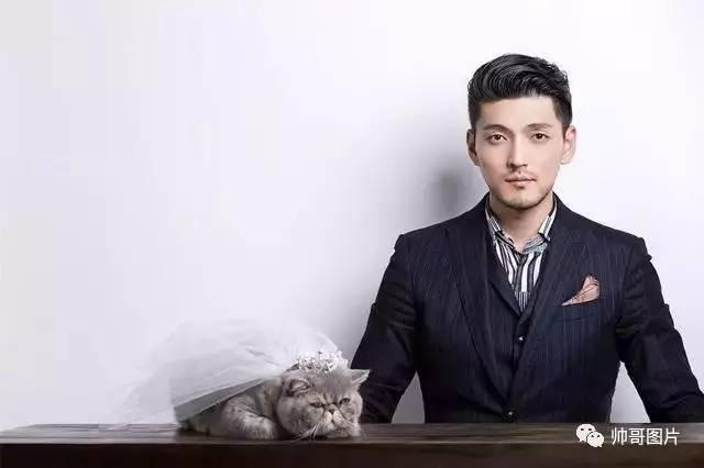 宠猫的暖男是最帅