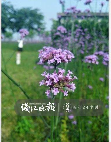 微信图片_20190518173652.jpg