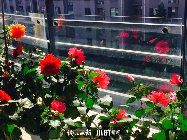 春风拂面 (3).jpg