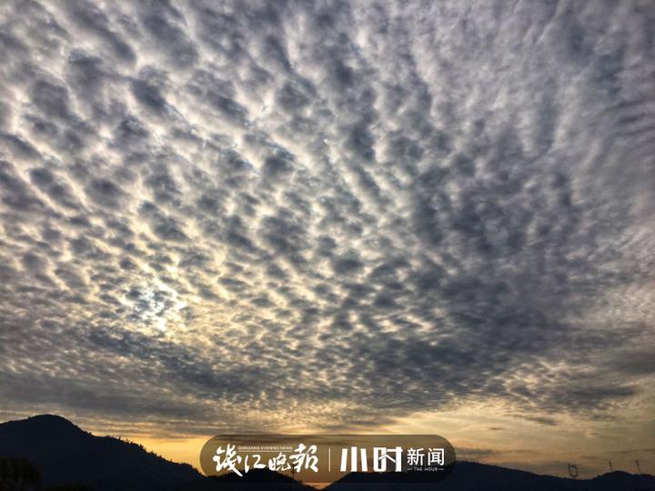 微信图片_20200219114954.jpg