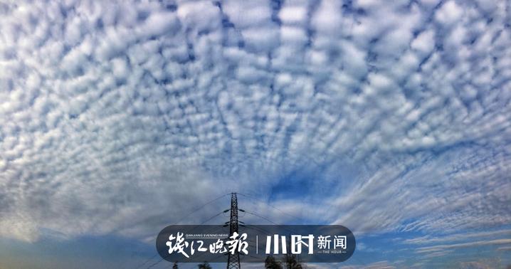 微信图片_20200219114959.jpg