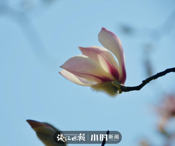 微信图片_20200221111322.jpg