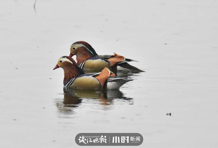 长孙无名 (1).jpg