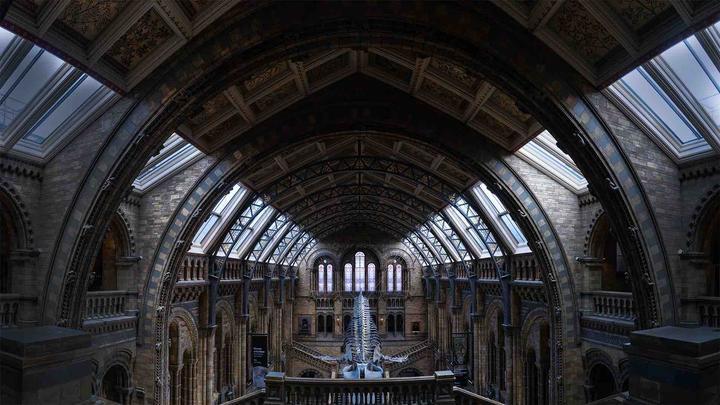 10英国自然历史博物馆_全景图.jpg