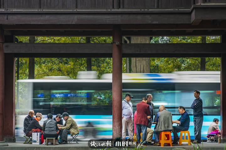 路边棋局  杭州市区,两群市民坐在路边的一个台阶上,各自专注于眼前的棋局,一辆公交车从眼前飞速驶过。草坪 摄.jpg