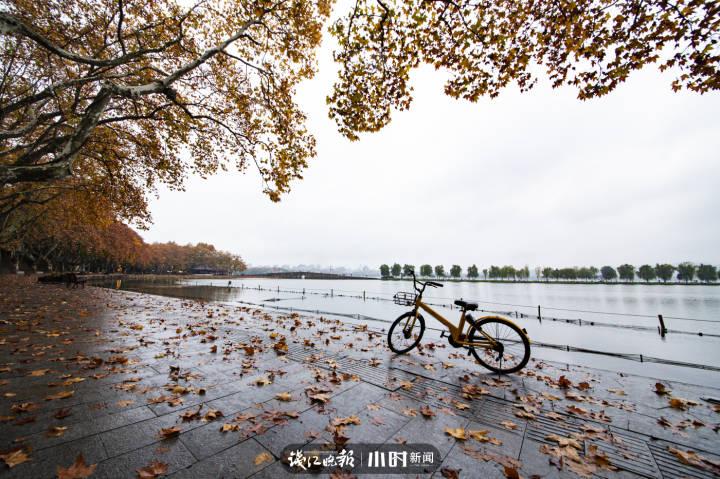 秋满湖畔 一辆单车停在落满树叶的湖边。一阵落叶满湖秋,唯独单车不惧愁,远观白堤行人稀,空谷大雁悄声走。   汪贤耿 摄.jpg