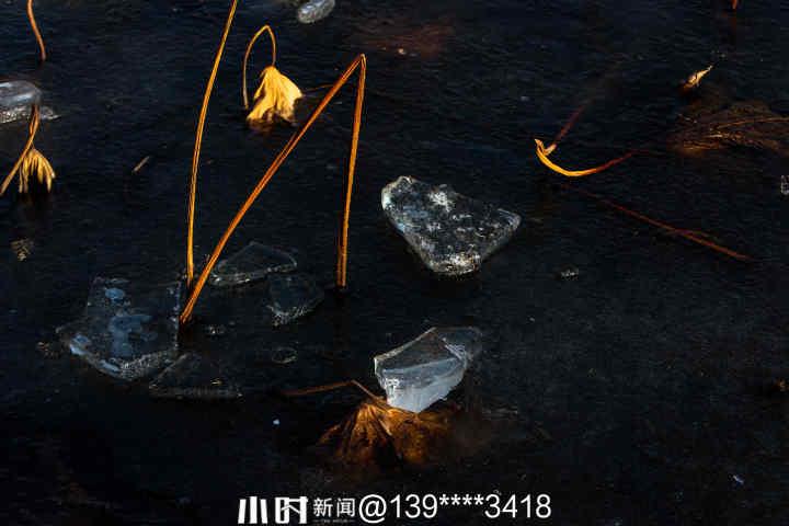 西湖冰3.jpg