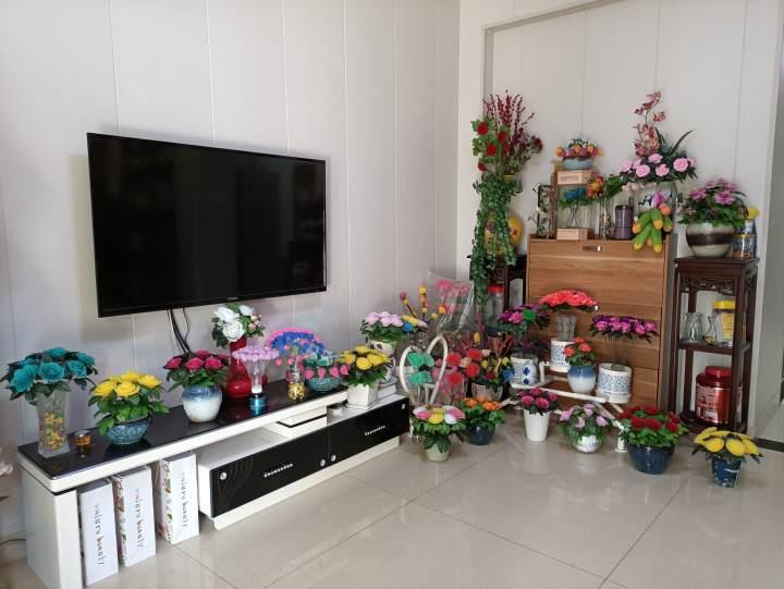 阿姨家里各种花.jpg