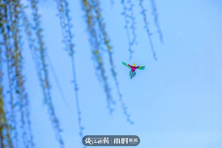 微信图片_20210305201101.jpg