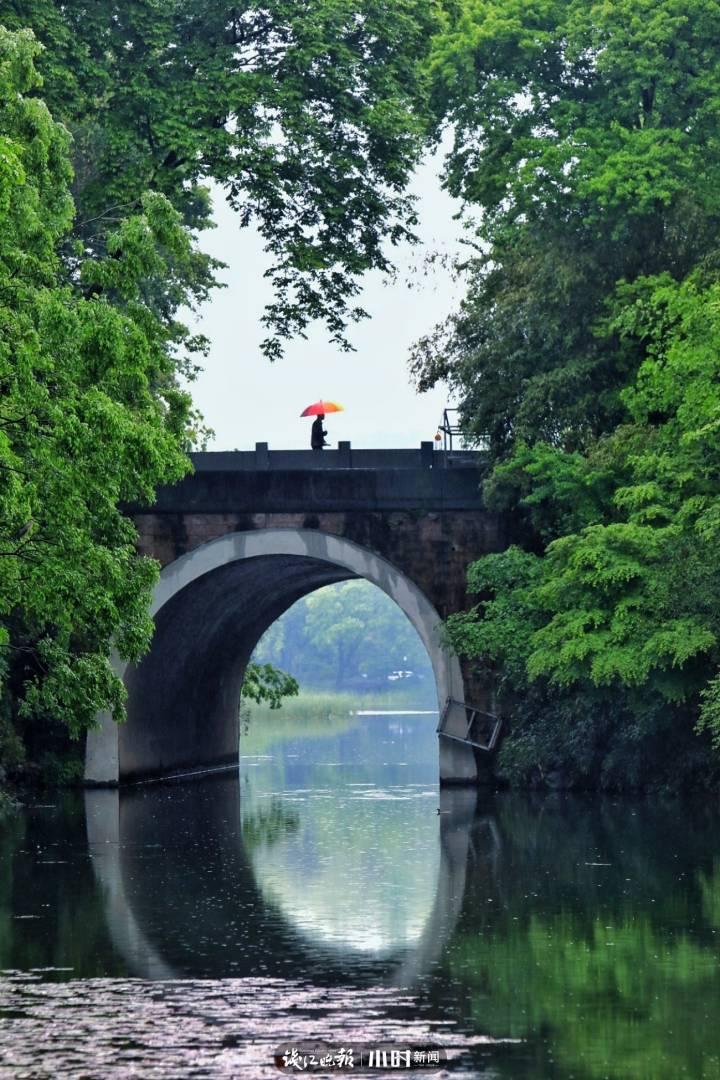 穆小特 暮春时分 花季已过 雨过红残绿浓,鸳鸯窃叹春暮。烟波湖上人孤。莫如鸟儿成偶。.jpg