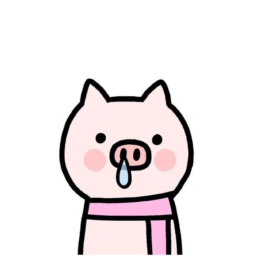 元气满满的猪猪