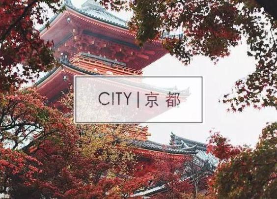 京都的绝美风景里,还藏着这些被你忽略的必去餐厅!