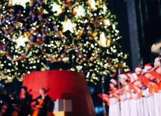 去年那棵惊艳杭城的圣诞树又回来了!超梦幻点灯仪...