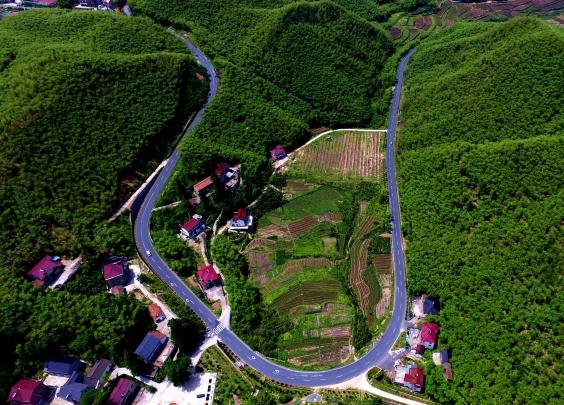 那么美的村和路,快来看有没有你家乡