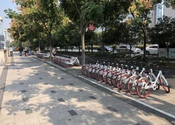 互联网租赁自行车怎么管,浙江亮出首条示范街