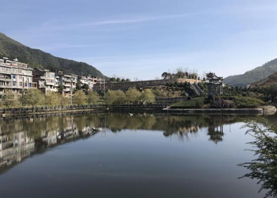泰顺石文化盛会引客来,借石之力创茗石龟湖4A景区