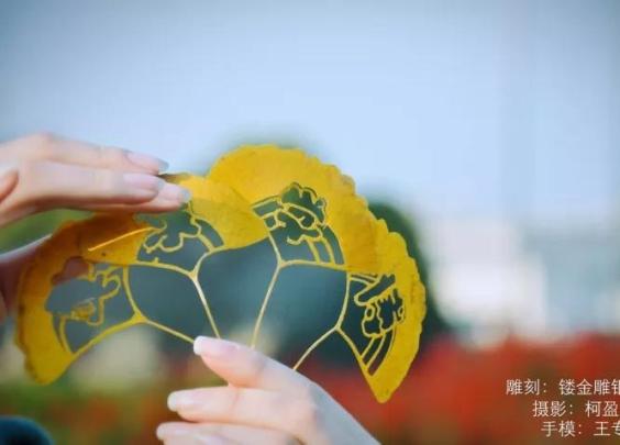 杭州有所学校,竟然在树叶上雕出了美景