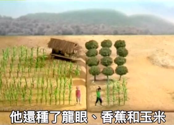 可爱广告:复合式农业就是不把鸡蛋放同一个篮子