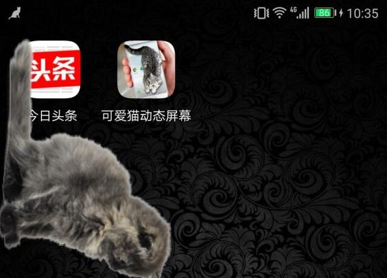 手机壁纸竟然可以养猫,你敢信?