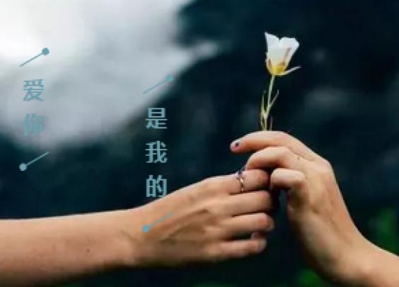 28岁儒雅海归老总:希望牵你的手,环游世界!