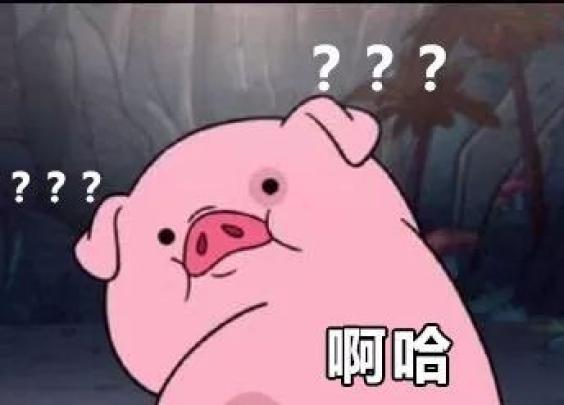 明明是狗年,为什么最火的是蠢萌的猪猪表情包?