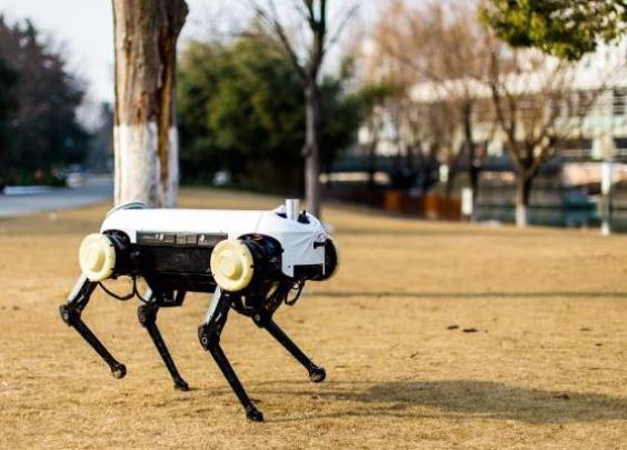 """浙大研发的机器狗,对仗美国""""大狗""""也不输哦"""