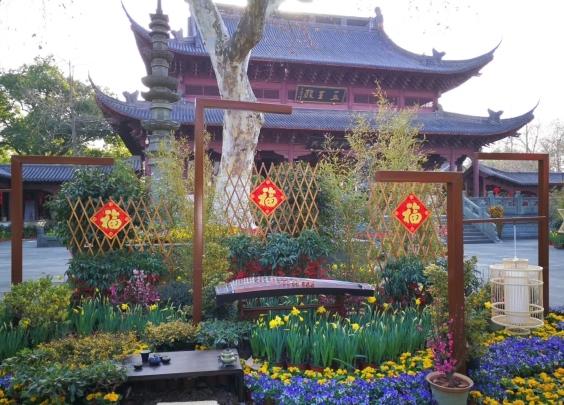 牡丹花开富贵来,留在杭州过年,可别错过这些新春...