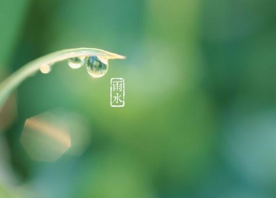 今日雨水,这个回娘家的日子,礼物你带对了吗