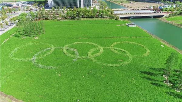 奥运五环.jpg