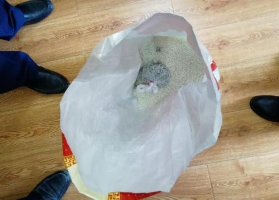 余杭大伯买袋装大米,吃到一半,吃出死老鼠!