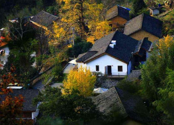 五一乡村新玩法:杭州这10条精品旅游路线不近不...