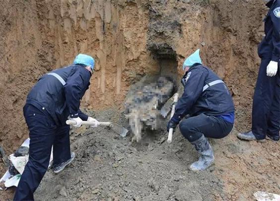 杭州警察挖掉半座山找到的传销受害人,经历了啥