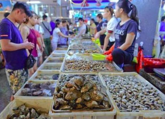 东海休渔下月开始,进口海鲜接棒休渔期