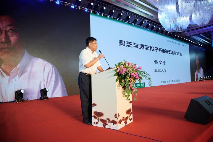 北京大学杨宝学教授做《去壁灵芝孢子粉药理学作用》报告.jpg